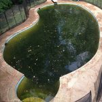 remove iron pool stains