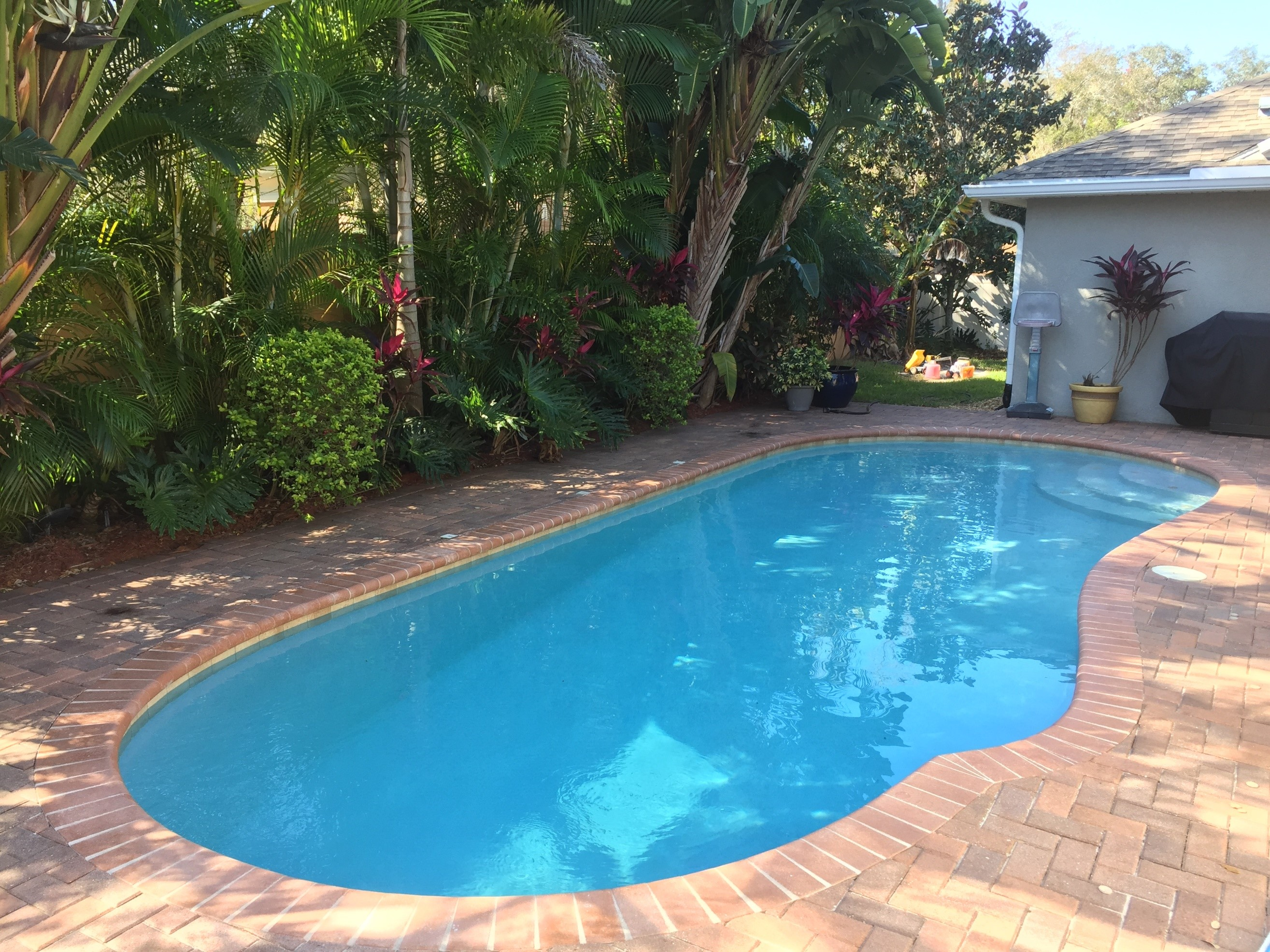 Bricks And Fertilizer From Plants Around Swimming Pool Add Stain-Causing Metals To Pool Water
